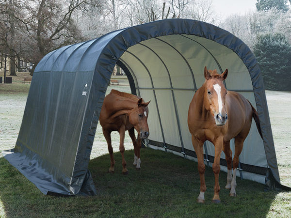 winter horses, equine shelter, run in shed